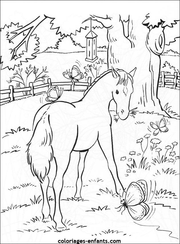 Coloriage de cheval imprimer - Dessin de chevale ...