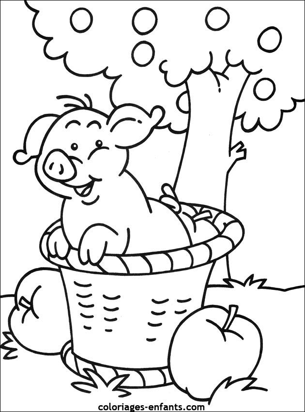 Coloriage De Cochon Gratuit.Coloriages De Cochons A Imprimer Pour Enfants