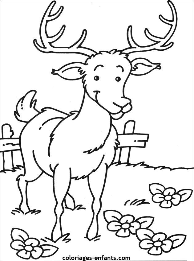 Coloriage enfant animaux - Dessin annimaux ...