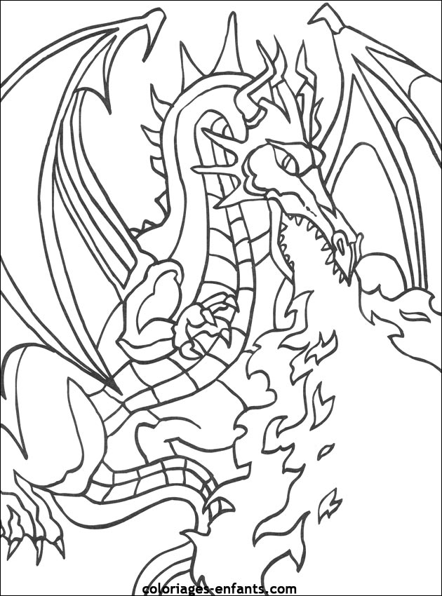 dessin de dragon  colorier