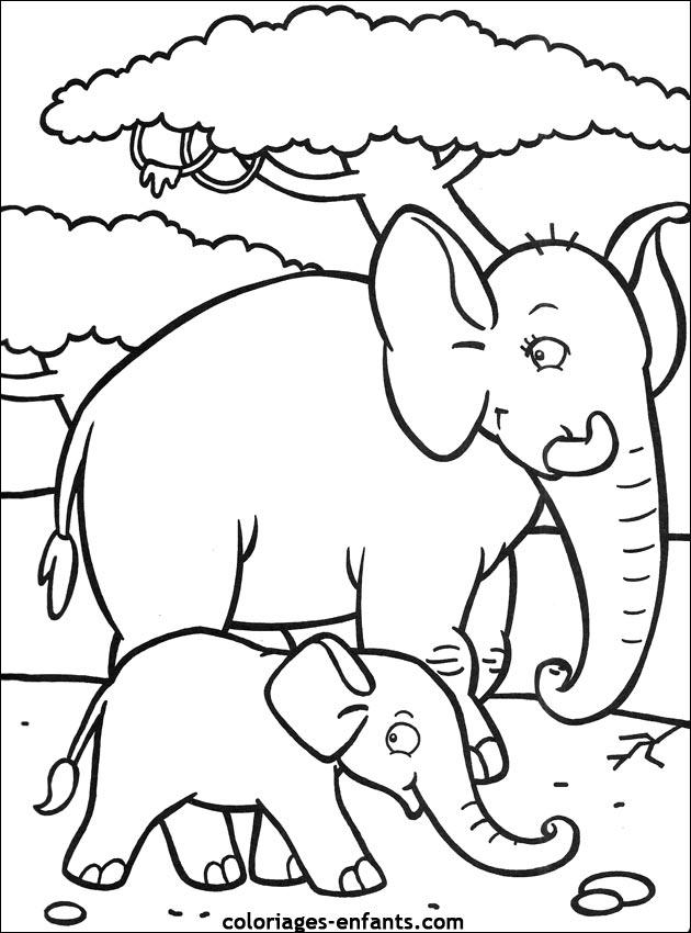 Coloriage d 39 l phants de la rubrique animaux imprimer de - Elephant a colorier ...