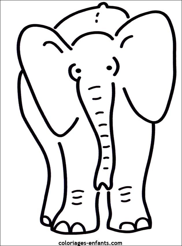 Coloriage d 39 l phants de la rubrique animaux imprimer de - Dessin d elephant ...