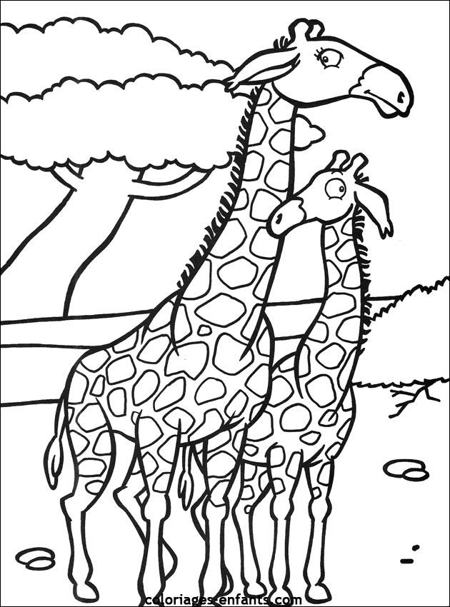 Dessin a imprimer de st valentin girafe - Girafe a imprimer ...