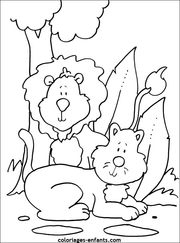 dessins lion
