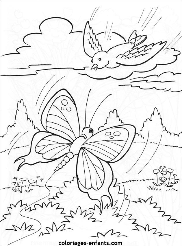 Papillons dessins - Papillon coloriage ...