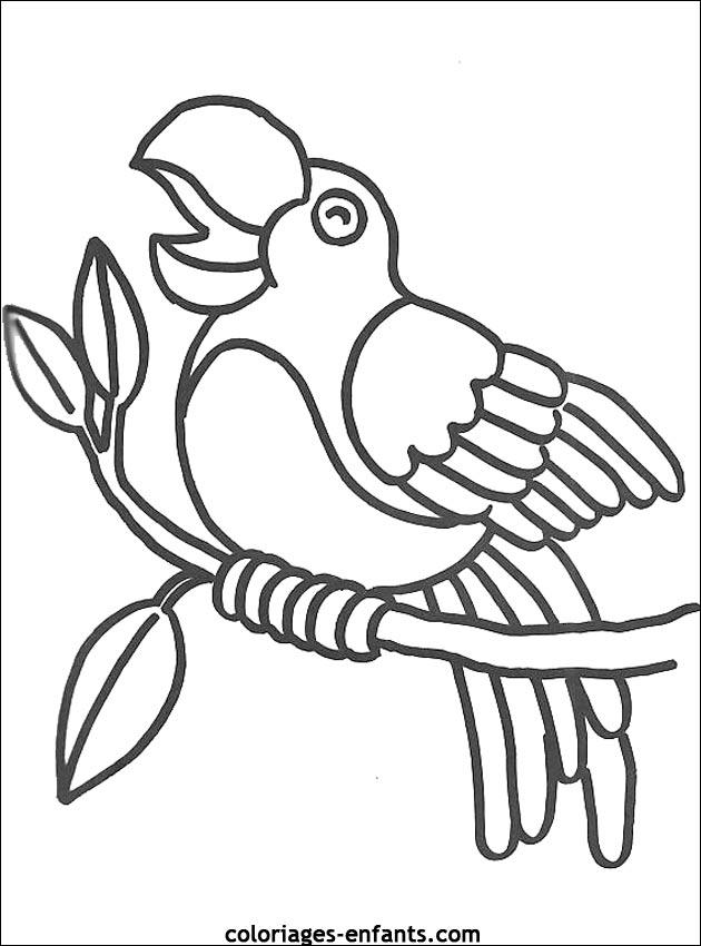 Coloriage D Oiseaux A Imprimer De Coloriages Enfants