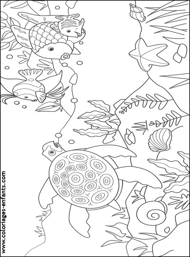 Coloriage poisson mer my blog - Coloriage poissons ...