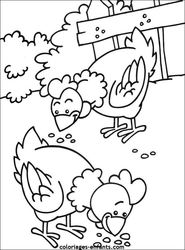 Favori Dessins de poules, coqs et poussins à colorier HD37