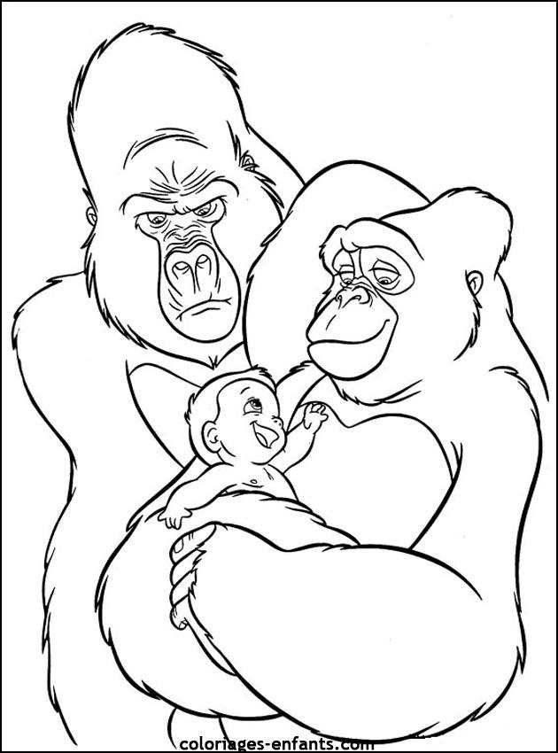Coloriage de singe imprimer sur coloriages - Coloriage prin ...