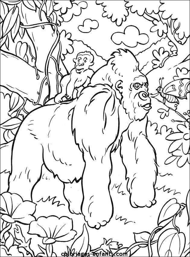 Coloriage de singe imprimer sur coloriages - Singe a dessiner ...