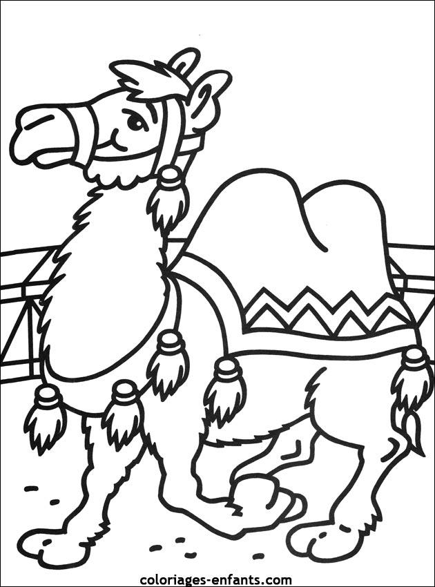 Les coloriages du cirque imprimer sur coloriages - Dessin de chameau ...