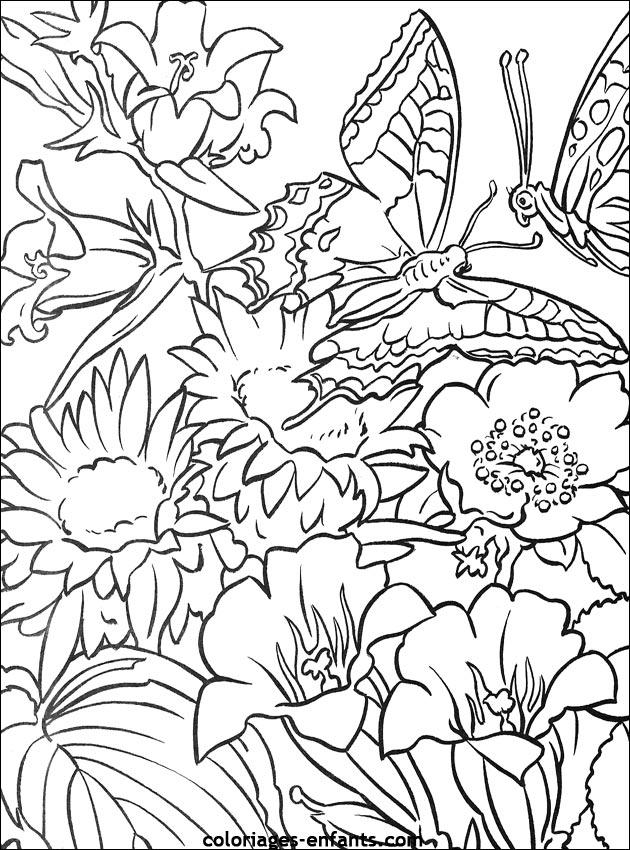 Les coloriages de fleurs sur imprimer sur coloriages - Dessin des fleurs a imprimer ...