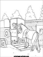 Coloriage cheval avec cavaliere www - Coloriage de cavaliere ...
