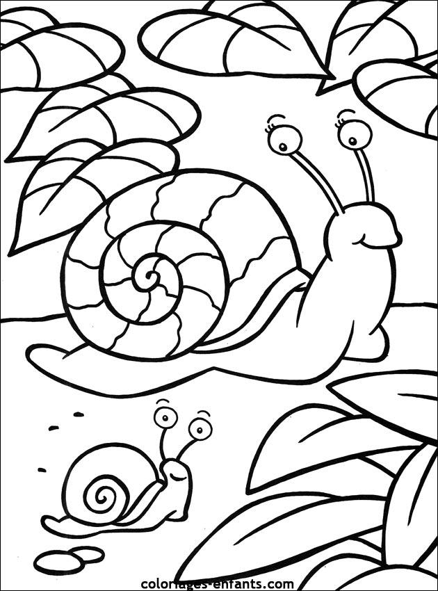 Coloriage d'escargots de la rubrique animaux à imprimer de coloriages - enfants