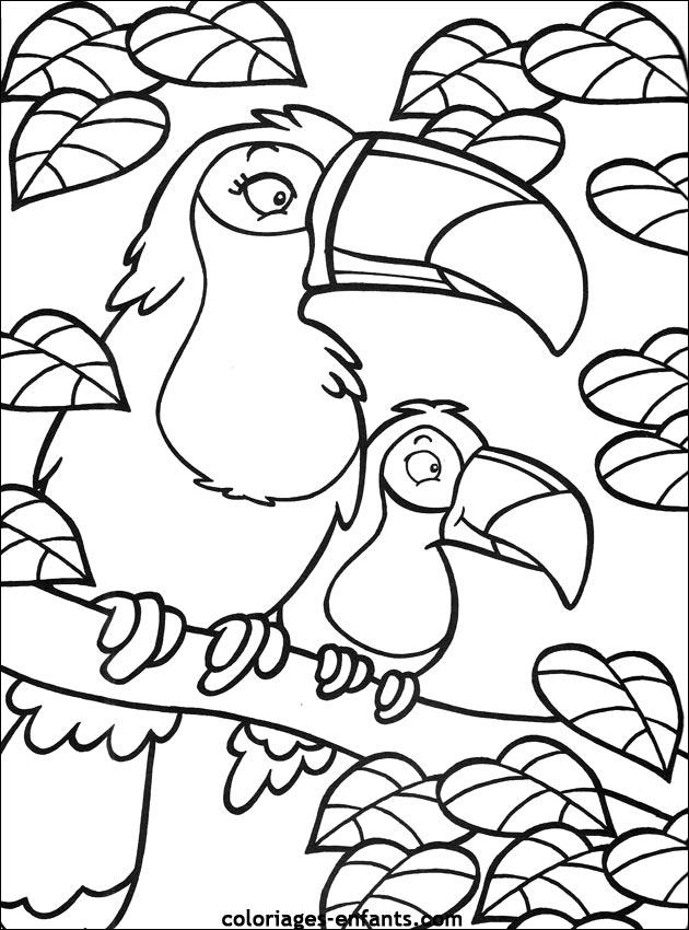 Coloriage d'perroquets de la rubrique animaux à imprimer de coloriages - enfants