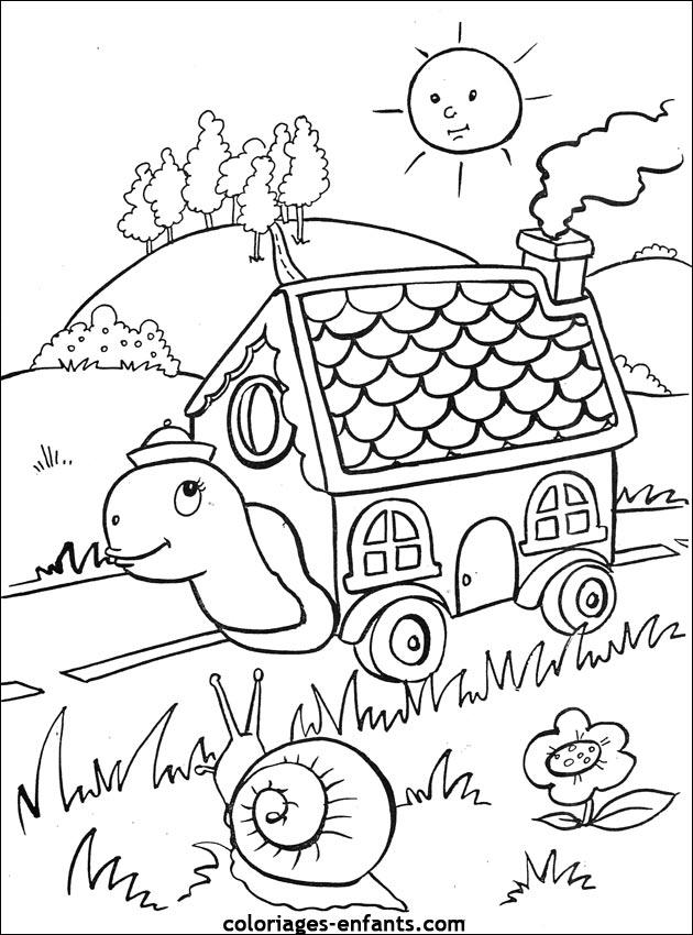 Coloriage de tortue coloriages-enfants.com