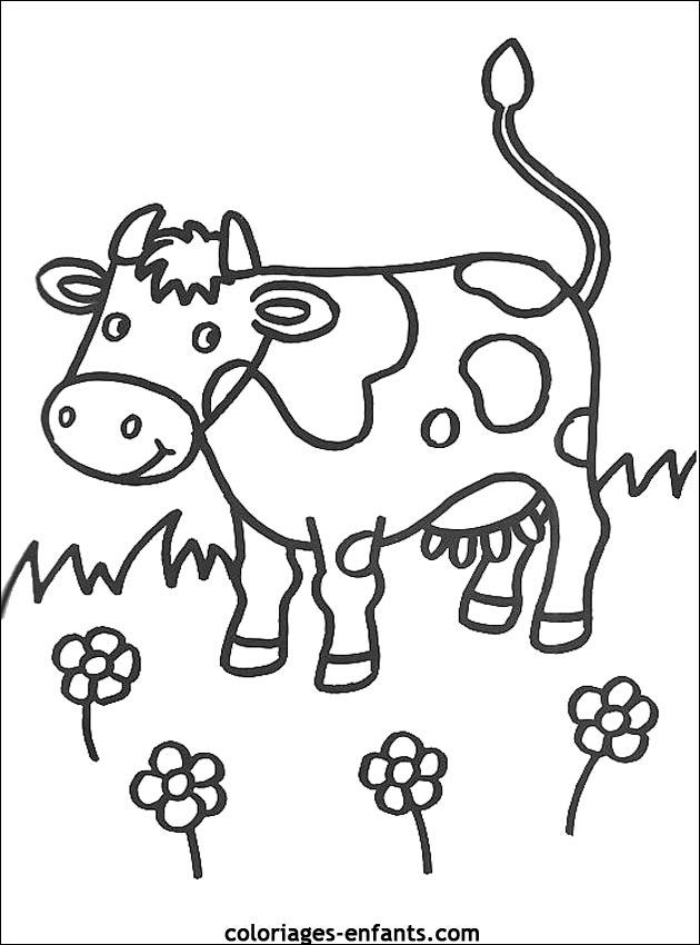 Coloriage de vaches sur coloriages-enfants