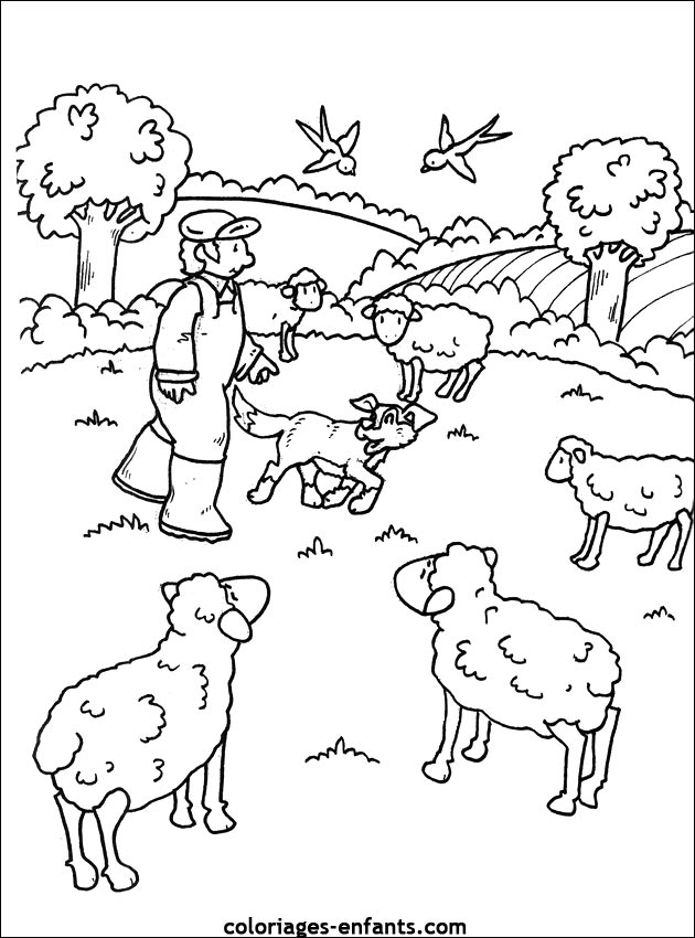 dessin animaux de la ferme