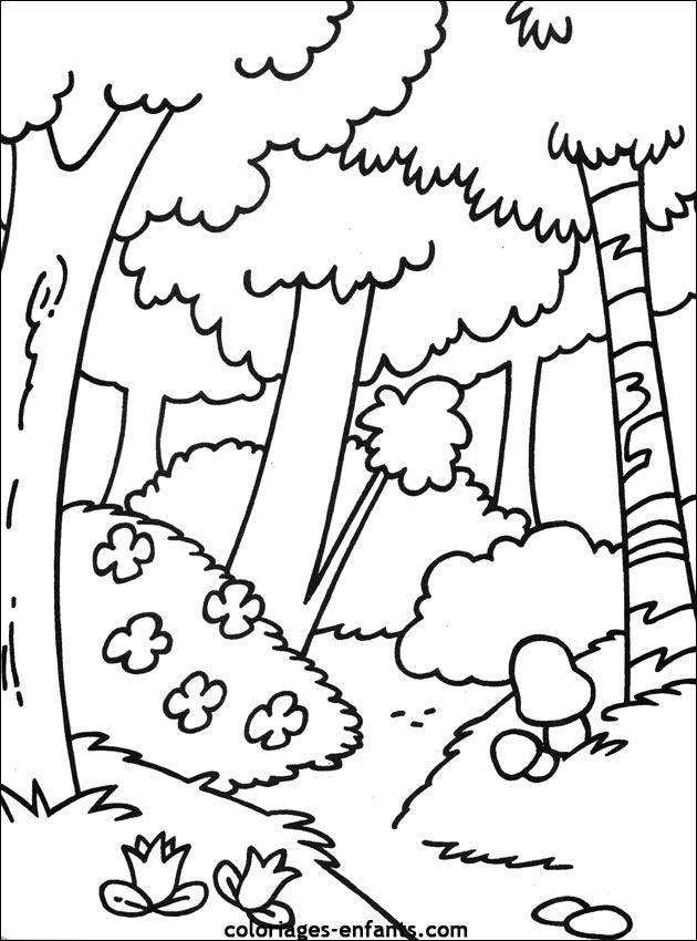 Les Coloriages d'arbres à imprimer sur Coloriages-enfants.com