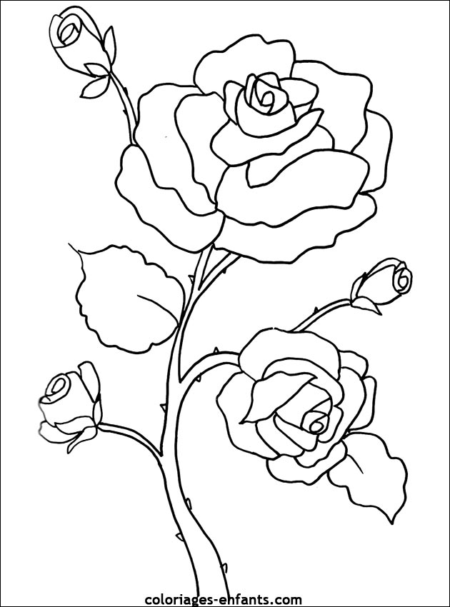 Les Coloriages de fleurs sur à imprimer sur Coloriages-enfants.com