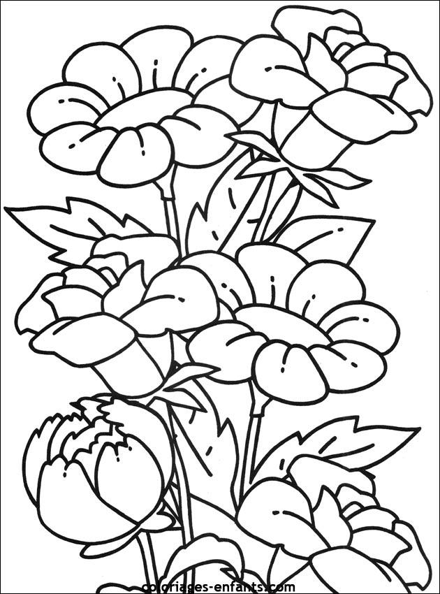 Les Coloriages D Fleurs A Imprimer Sur Coloriages Enfants Com