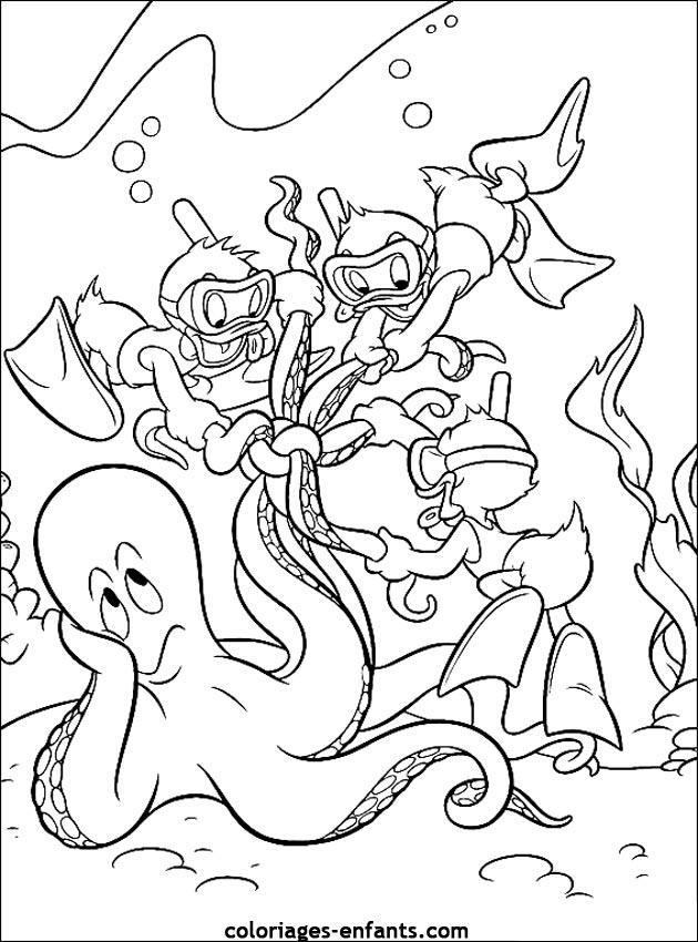 Coloriage Animaux Mer.Unique Coloriage Animaux De La Mer Impressionnant Coloriage