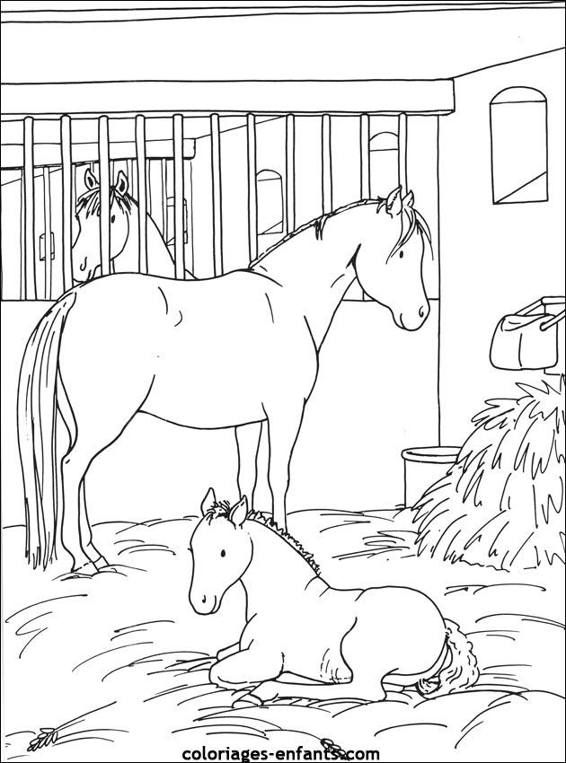 Les Coloriages d'équitation à imprimer sur Coloriages-enfants.com