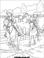 Coloriage De Cheval Deja Colorier.Coloriages D Equitation